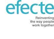 Logo Efecte Partner